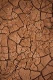 Сухая, треснутая почва без оставаться жизни Стоковое Изображение
