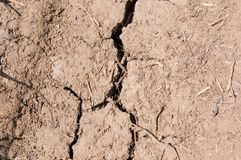 Сухая, треснутая почва на весеннем времени Стоковое Изображение