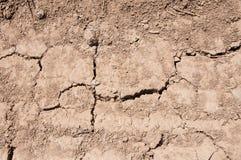 Сухая, треснутая почва на весеннем времени Стоковое фото RF