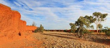 Сухая централь Австралия кровати заводи реки Стоковое Изображение RF
