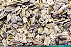 Сухие большие семена подсолнуха на конце рынка вверх Стоковые Изображения RF