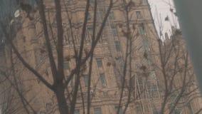 Сухие ветви дерева перед государственным университетом Москвы на реконструкции видеоматериал