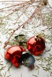 Сухие ветви елевого и сломленного шарика Стоковая Фотография