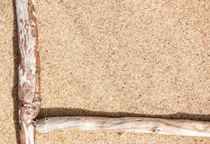 Сухие ветви на песке Стоковое Изображение