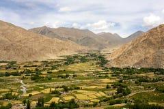 Сухие горы с зеленой долиной в Leh, Ladakh Стоковые Изображения RF
