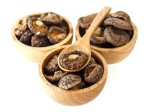 Сухие грибы Shiitake Стоковые Изображения RF