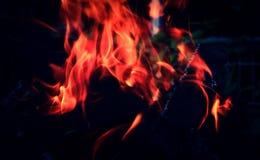Сухие журналы горят на коле Стоковые Фото