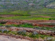 Сухие заводи и русла реки приближают к Ла Oliva на Фуэртевентуре Стоковые Фото