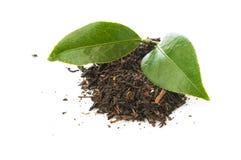 Сухие листья чая Стоковая Фотография RF