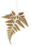 Сухие лист папоротника Стоковая Фотография