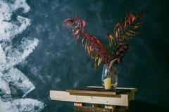 Сухие листья в вазе окно белизны сбора винограда стула нутряное близкое Темная предпосылка Осень стоковые изображения