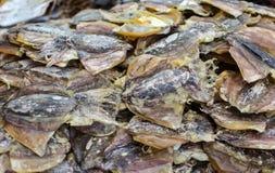 Сухие морепродукты Стоковые Фото
