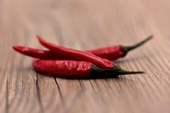 Сухие перцы чилей Стоковое Фото