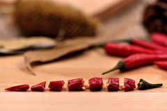 Сухие перцы чилей Стоковое фото RF