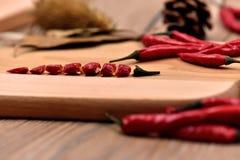 Сухие перцы чилей Стоковое Изображение