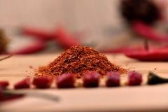 Сухие перцы чилей Стоковое Изображение RF