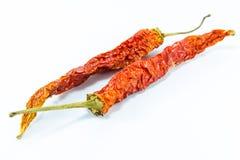 Сухие перцы chili Стоковое фото RF