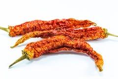 Сухие перцы chili Стоковая Фотография