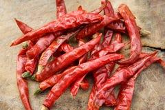 Сухие перцы chili Стоковые Фото