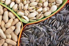 Сухие плодоовощи стоковое изображение rf