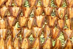 сухие посоленные рыбы Стоковые Фото