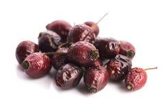 Сухие плоды шиповника ягоды Стоковые Фото