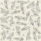 сухие раковины leafes Стоковые Фотографии RF