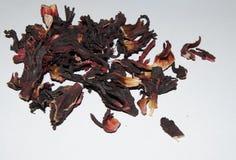 Сухие розовые листья стоковые изображения rf
