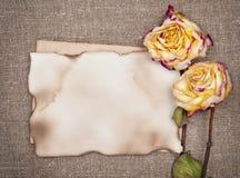 Сухие розы и постаретая бумага на мешковине Стоковые Изображения