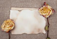 Сухие розы и постаретая бумага на мешковине Стоковое Фото