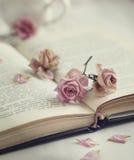 Сухие розы и старая книга Стоковая Фотография RF