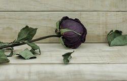 Сухие розы на деревянной предпосылке картины Стоковое Изображение RF
