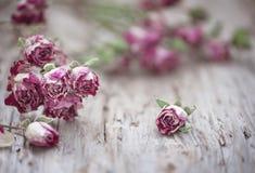 Сухие розы чая на старой деревянной предпосылке Стоковые Фото