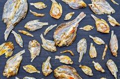 Сухие рыбы и солнечный на черном деревянном поле Стоковые Изображения