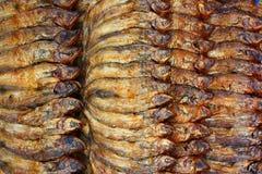 Сухие рыбы Стоковое фото RF