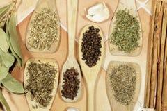 Сухие травы и семена используемые как специи в варить Стоковое Изображение RF