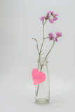 Сухие цветки в симпатичной стеклянной бутылке Стоковое фото RF