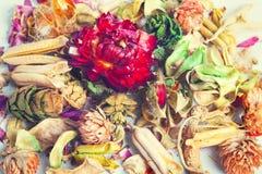 сухие цветки Стоковое Изображение RF