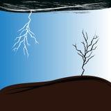 Сухое дерево в шторме Стоковые Фотографии RF