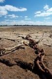 сухое озеро Стоковое Фото