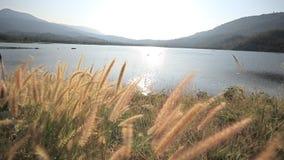 сухое озеро видеоматериал