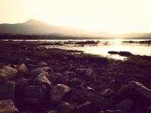 сухое озеро Стоковые Фото
