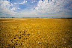 сухое озеро Стоковые Изображения