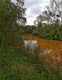 сухое река стоковые изображения rf
