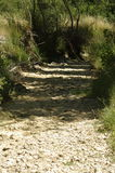 Сухое русло реки в центральной Испании Стоковая Фотография