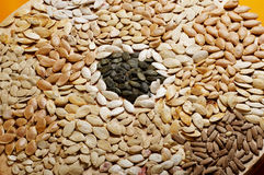 сухое семя pummpkin стоковое изображение