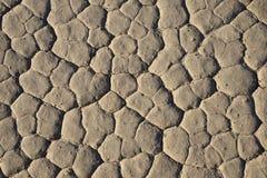 Сухое playa Стоковое фото RF