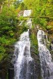 Сухожилие водопада в Вогезы Франции стоковая фотография