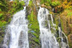 Сухожилие водопада в Вогезы Франции стоковая фотография rf