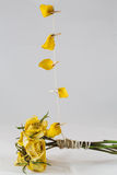 сухой желтый цвет роз Стоковое Фото
